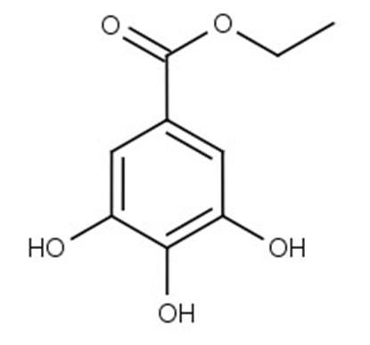 Ethylgallate