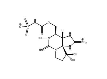 Gonyautoxin 6 (5μg in 0.5mL)